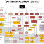 Hybris Development Skill Tree